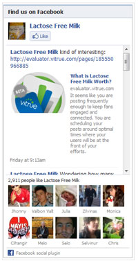 Facebook Like Box Widget | Easy WordPress Website