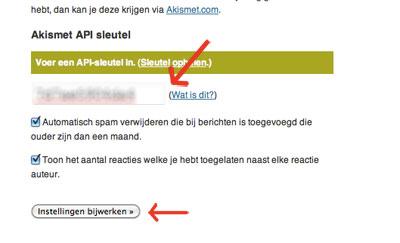 Akismet API-Key invoeren in de plugin  | Easy WordPress Website | Biz2Web