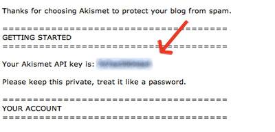Mail met Akismet API-key  | Easy WordPress Website | Biz2Web