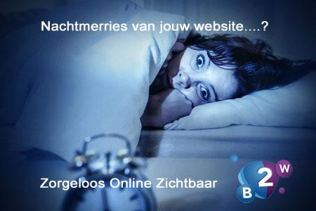 Zorgeloos online zichtbaar zijn: Biz2Web